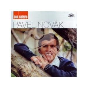 Pavel Novák - Pop galerie len 9,99 €