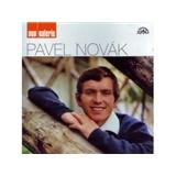 Pavel Novák - Pop galerie